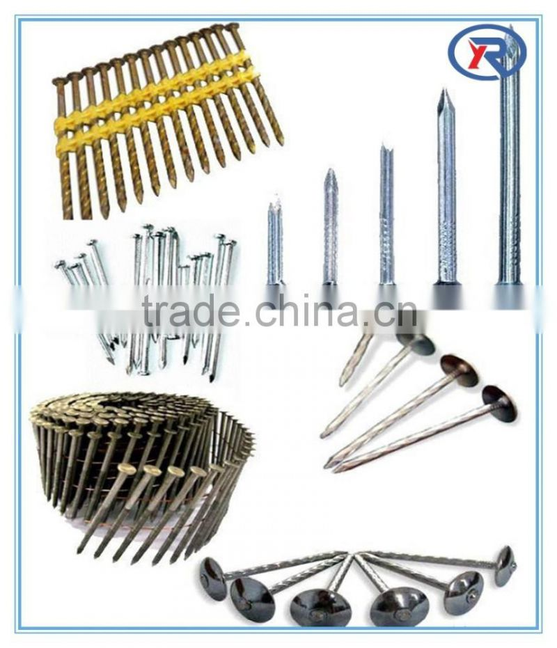 Hardened Steel Galvanized/Black Concrete Nails From china factory