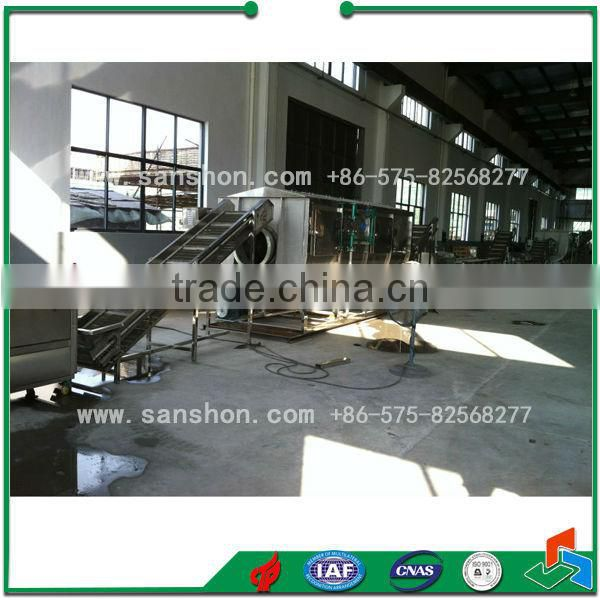 Vegetables and fruits production line