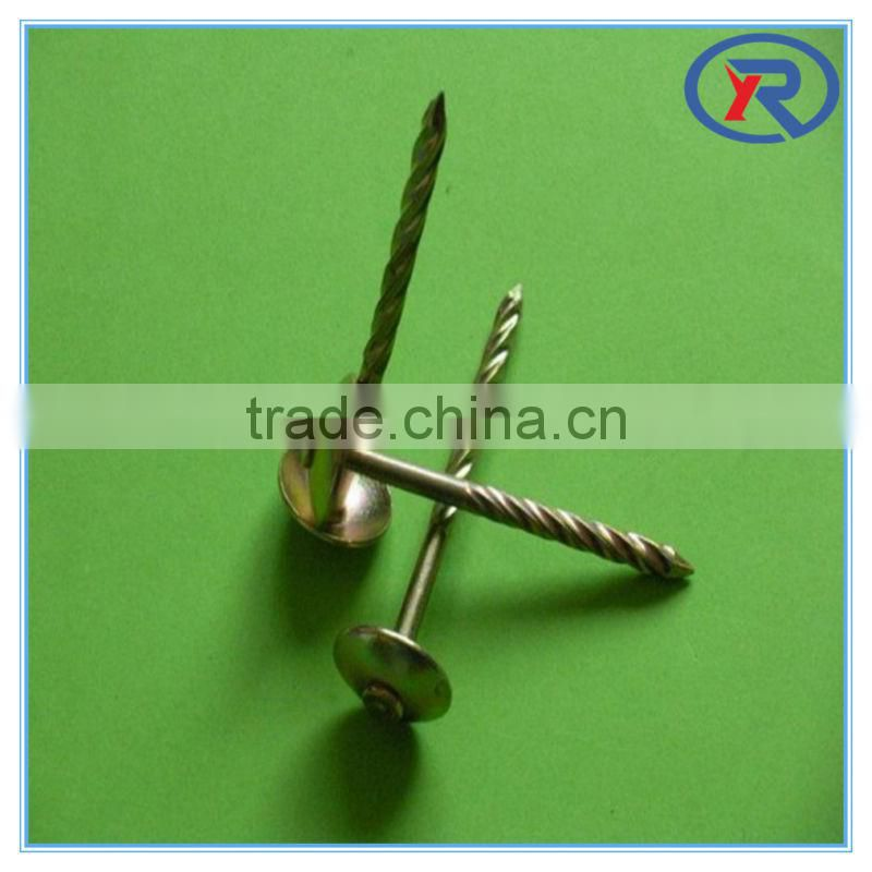 trade assurance galvanized Umbrella head corrugated roofing nails made in china