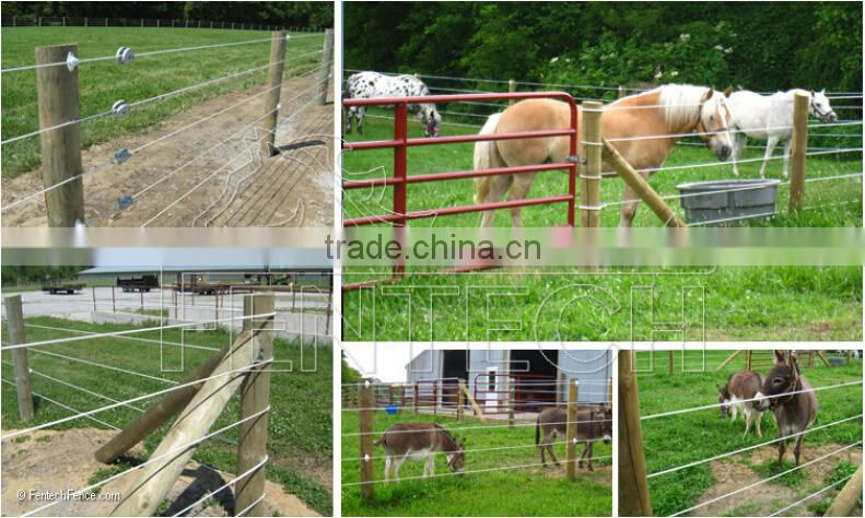 High Quality Fentech Electric Fence Plastic Post