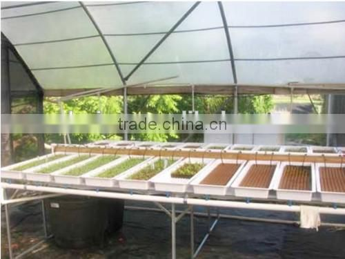 soilless culture substrate for lettuce, spinach etc seedings growing