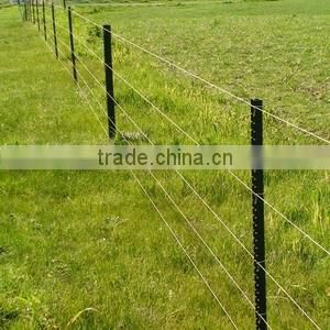 galvanized steel wire mesh square wire mesh decorative Weld Mesh Panel popular
