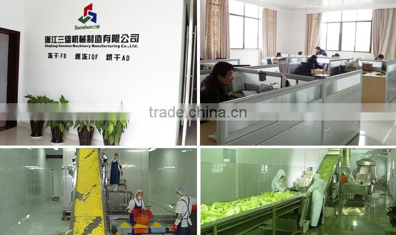 China Fruits Vegetables Blancher Cooking Equipment