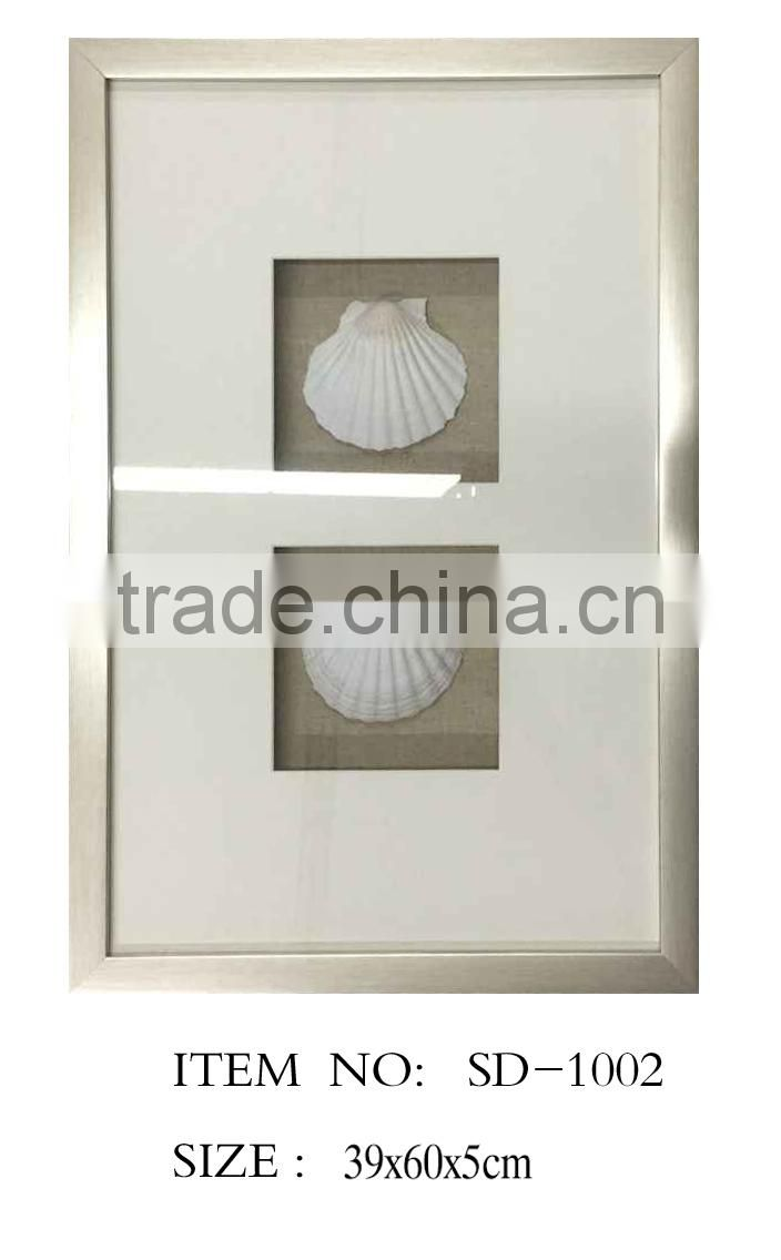 Shadow Box with White Seashell