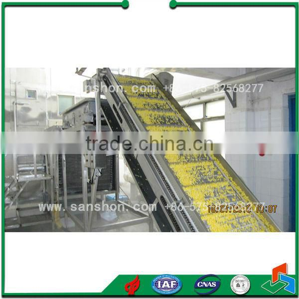 Advanced Sanshon Fruit and Vegetable Fluidized Freezer