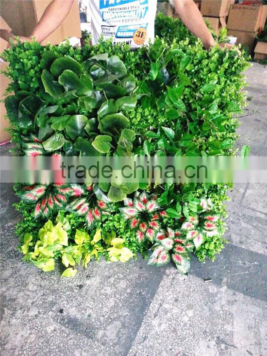 2017 factory price hot sale plastic plant wall artificial wall sale