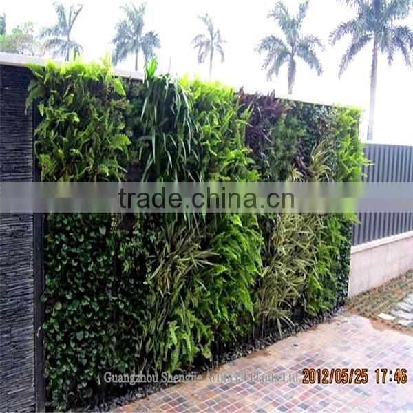 China whole sale green artificial plant wall for decoration in factory price