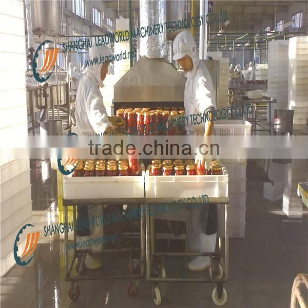 new design Food Machine/fruit processing line/vegetable processing line/strawberry processing line