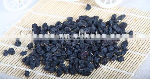 Blueberry Multiple layer continuous type mesh belt dryer