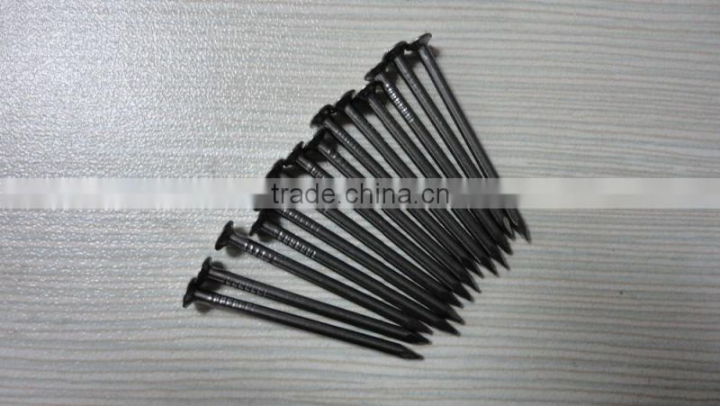 Common iron nail metal nails best price from china manufacturer