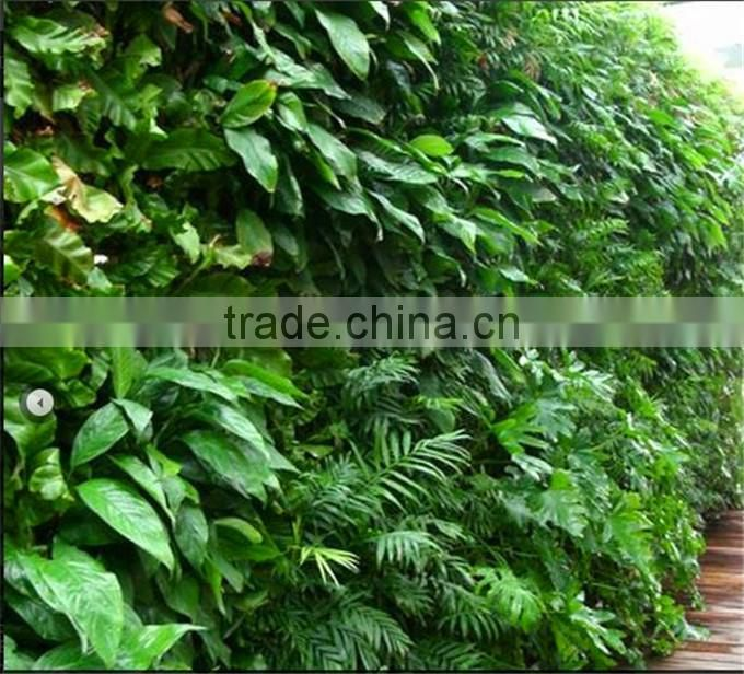 Artificial Primeval Jungle plant wall (special offer/bargain price:/2014 High Quality Factory pricer )