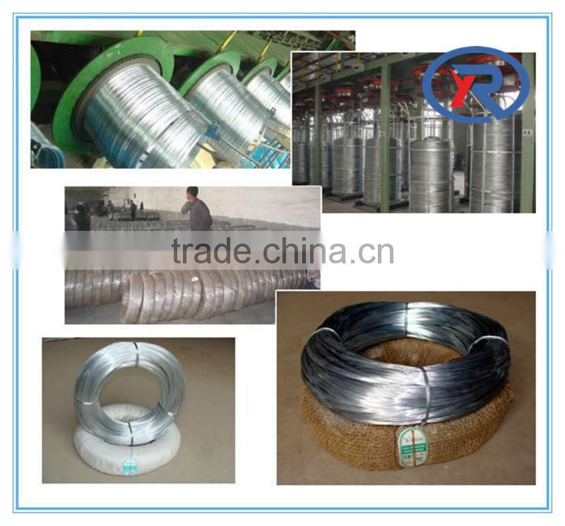 low price galvanized iron wire /electro galvanized binding wire