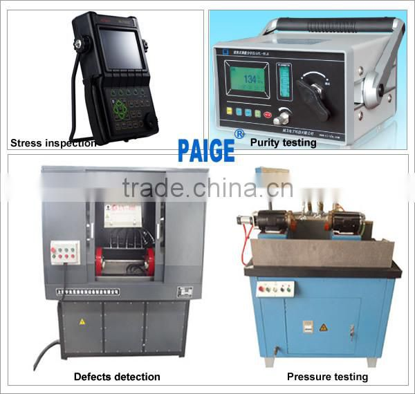 China PAIGE Gold Supplier Sale PSA Nitrogen Machine