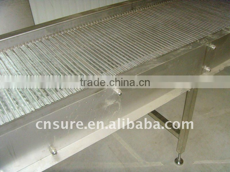 food grade belt conveyor system