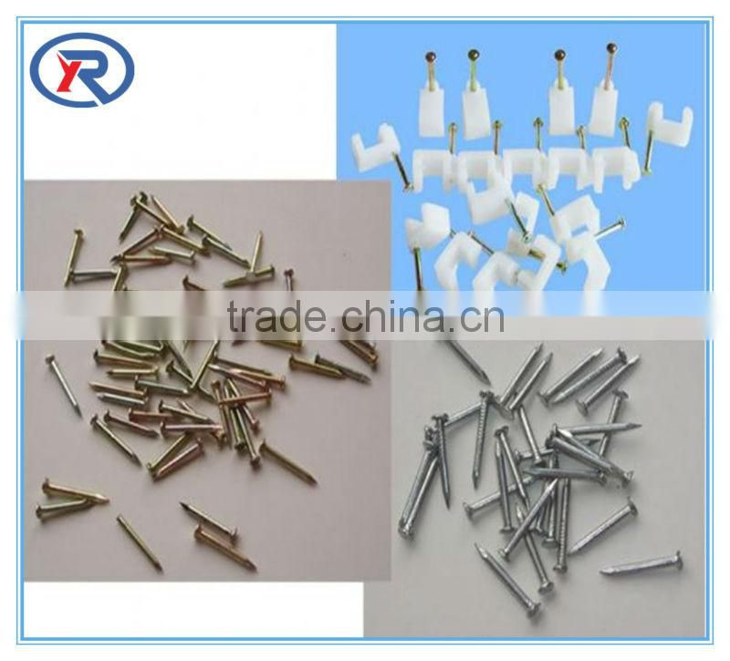 Competitive High Standard Galvanized Hardened Concrete Steel Nails