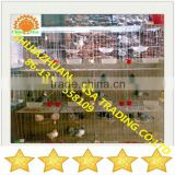 cheap pigeon breeding cage
