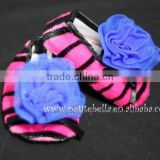 Hot Pink Zebra Print Shoes with Royal Blue Rosettes Pettishoes Crib Shoes MAS30