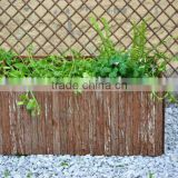 garden willow planting pot