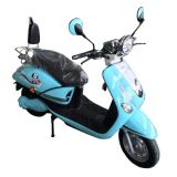 New two wheels 800w electric scooter adult
