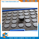 1308 1313 1608 PDC Cutter for Oil drilling bit
