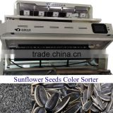 2015 New Crop Long Type Sunflower Seeds/seeds color sorter BY MINGDER