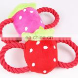 Beatiful Strawberry Cotton Rope Plush Toys for Animals' Training, Good Friend for Puppies