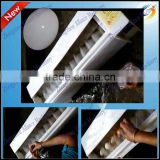 Hot sale best price small automatic egg washing machine