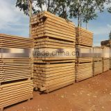 Brazilian Teak Sawn Timber / Square Log