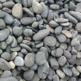 Fish Tank Gray Natural Cobbles Stone Pebbles Tumbled 8 - 15cm