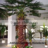 factory direct high quality Palm tree with cheap price palm tree for shopping mall decoration
