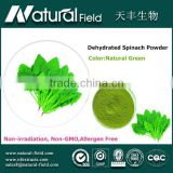 With 12 years experience Health supplement greens supplement dehydrated vegetables spinach powder