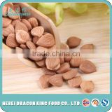 2016 High Quality Chinese Bitter and Sweet Apricot Kernel, blanched apricot kernels, debittered apricot kernels