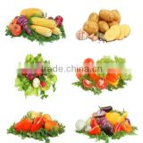 All-natural dehydrated vegetable extract powder
