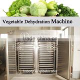 ISO CE Certificate vegetable dehydration Machine
