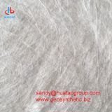 PP Spondbonded Non woven Needle Punched Geotextile