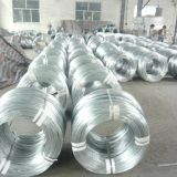 Dingzhou factory 16 17 18 19 gauge galvanized wire supplier
