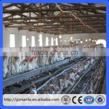 Guangzhou Factory 128 birds capacity heavy duty galvanized Chicken layer cage/Chicken breeding cage