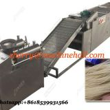 High efficiency starch noodle machine manufacturer