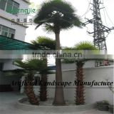 Big artificial canary date palm tree for indoor&outdoor decoration made in guangzhou
