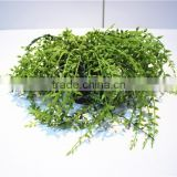 Home garden decoration 40cm height green lover tears grass vine EQRL04 0804
