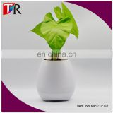 Office decompression toy bluetooth music pots manufacturer custom smart music flowerpot