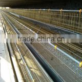 Factory Chicken Layer Cages of A type for Farm with 3layer,4layer,5layer (Hot galvanized/Electric galvanized)