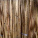 White Fern Screen Fence