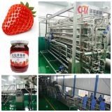 strawberry paste processing line