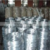Electro Galvanized Iron Wire Manufacturer ISO9001 ( Factory )