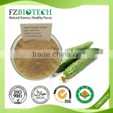 100% Pure Natural Cucumber Juice Powder Dried dehydrated Vegetable Cucumber Powder