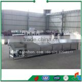 fruit&vegetable chain type blanching machine