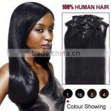 High Quality Virgin Brazilian Clip In Hair Extensions Wholesale