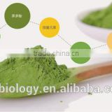 Top quality green tea powder matcha powder Matcha / Matcha Green Tea / Matcha Green Tea Powder