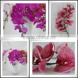 China wholesale factory price plastic flowers for home/room/office/hotel decoration artificial orchid